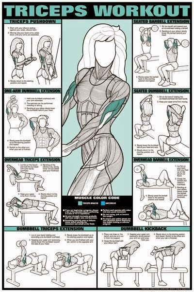 Fitness Girls Check out Dieting Digest www.greennutrilabs.com
