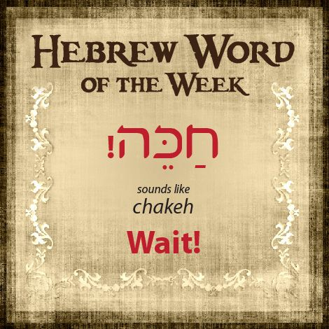 Shalom! Lisa here, a volunteer artist with HolyLanguage.com. Each week I share a new word to add to your growing vocabulary. By the end of the year you'll have 52 more words. We all have time for one more! Thanks for joining me. <3