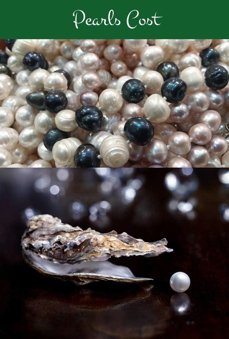 a7099ac7c Pearls Cost. Make The Most Efficient Decisions Associated With Pearls  Necklaces Society #pearls #freshwaterpearls #tahitianpearls #southseapearls