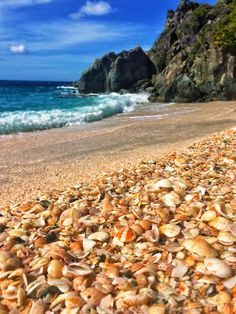 Shell Beach on St. Bart's, French West Indies