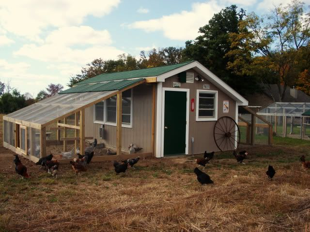 Very nice large chicken coop - has 3 interior rooms, so has space to separate flock. Has two runs, one on each side of the coop. Very cool!