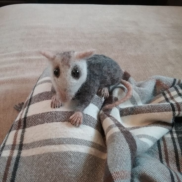 Needle felted baby opossum by Thedustyrabbit