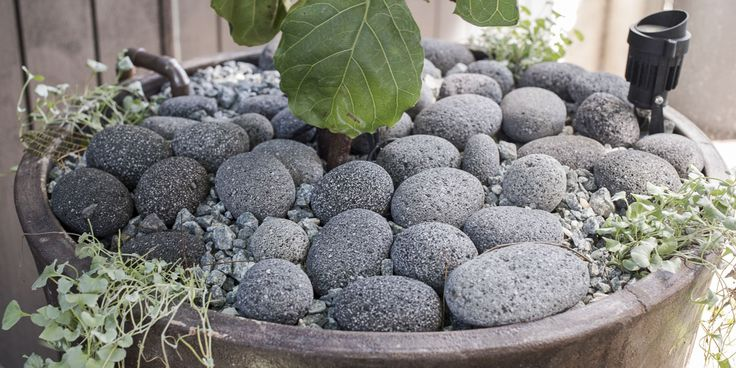 #stonepebbles #steppingstones #claypot