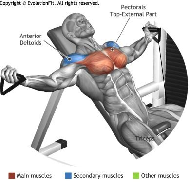 CHEST -  INCLINE BENCH CABLE FLYES