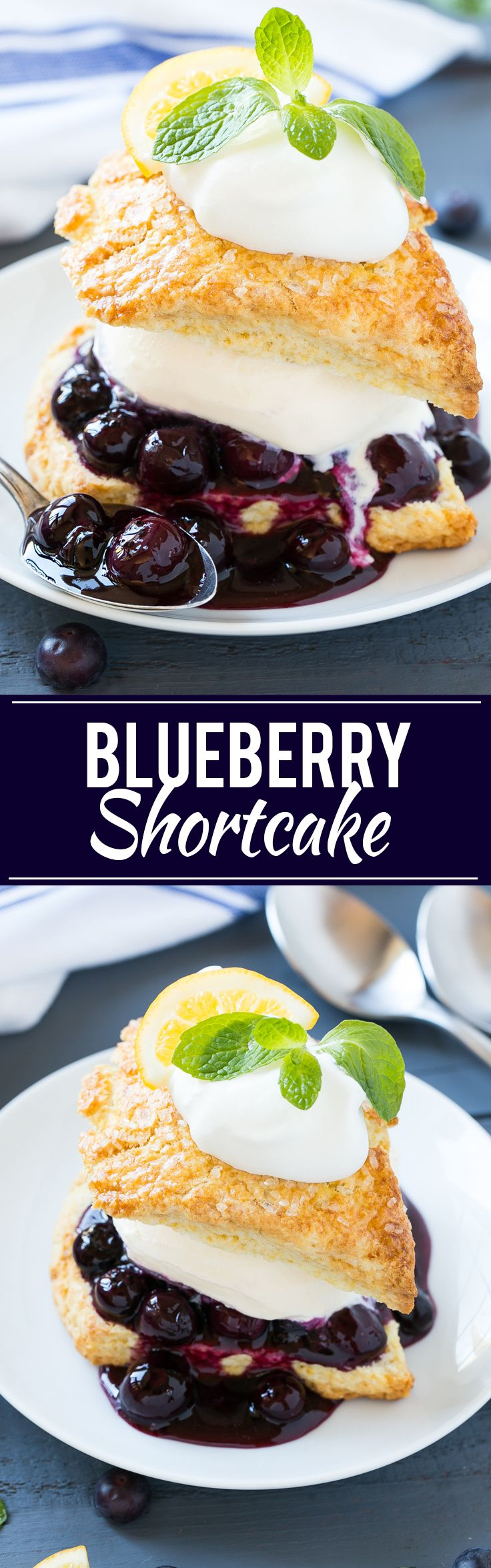 Best of Home and Garden: Blueberry Shortcake - Dinner at the Zoo