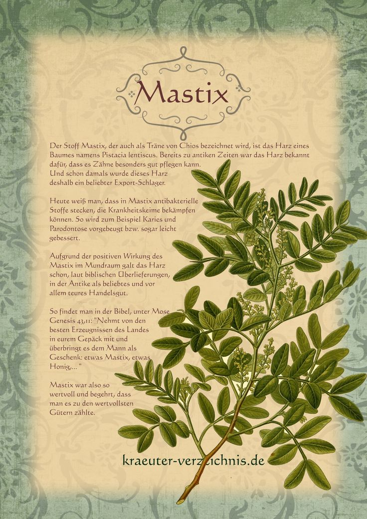 Mastix