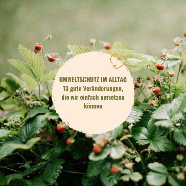 13 Tipps für Umweltschutz im Alltag • WOMAN.AT