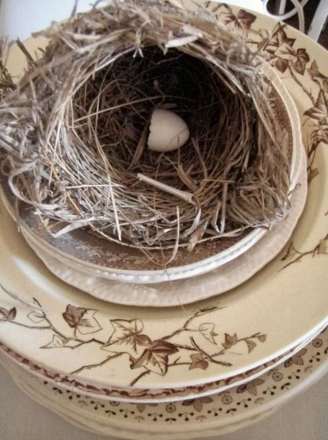 brown aesthetic transferware, birds nest with an egg.... can't get much better!