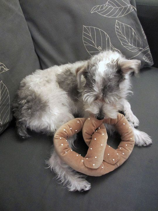 Bc the Berg pups need to feel the love, too. Pretzel Dog Toy w/ Squeaker by LittleBarkster on Etsy