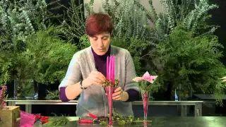 Rosa Valls formació - YouTube