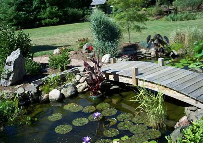 Back Yard Fountains | Outdoor Fountains And Waterfalls | Garden Fountains and Ponds Ideas ...