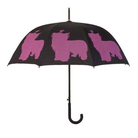 Parasol Yorkshire Terrier