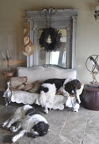 mirror...and adorable dogs! :)