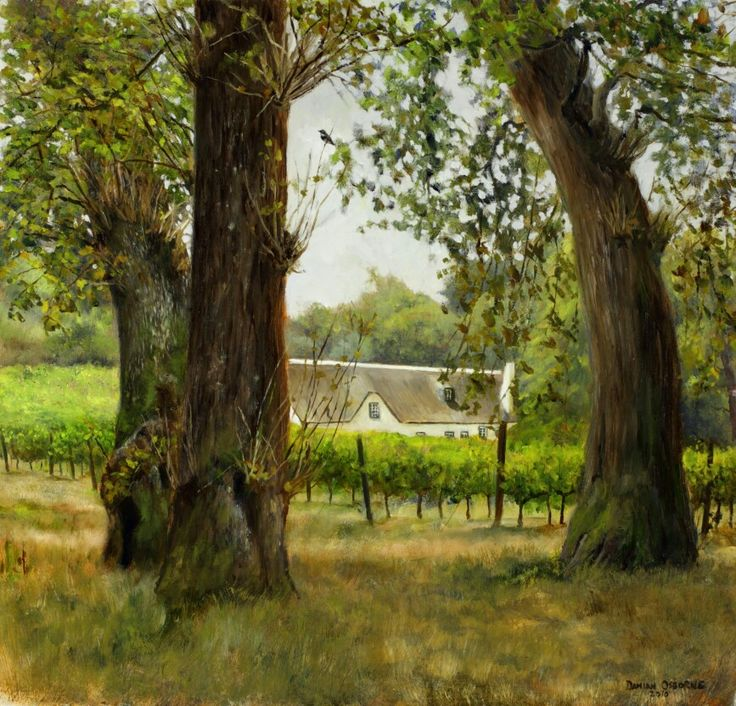 Cottage through Oak Trees - Oil on Board. 31 x 30 cm. A thatched-roofed cottage at the end of a small vineyard framed by oak trees. A troop of about 70 baboons past within meters on all sides of me while I was sitting painting this en plein air and they just seemed to ignore me.