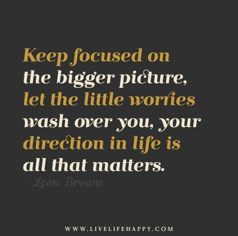 Keep focused on the bigger picture, let the little worries wash over you, your direction in life is all that matters. - Leon Brown