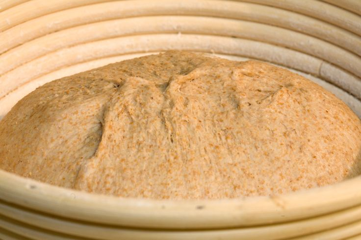 Rustic Red Fife Whole Grain Bread - Wheat Recipes | Anson Mills - Artisan Mill Goods