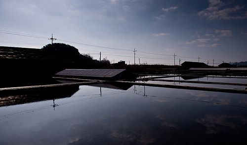 Reflection of GomSo-YumJun in Korea