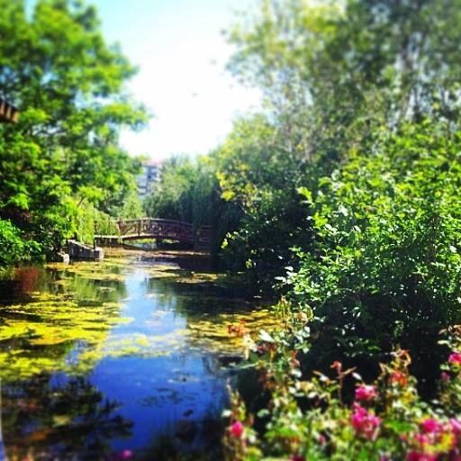 Atatürk Üniveristesi- Ata Botanik Park 2014 Temmuz