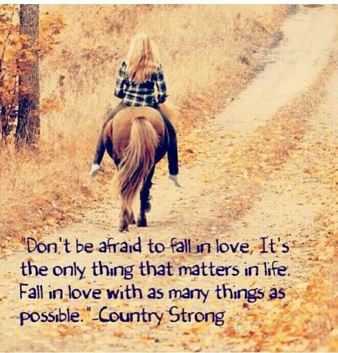 Best 25+ Country Strong Quotes Ideas That You Will Like On
