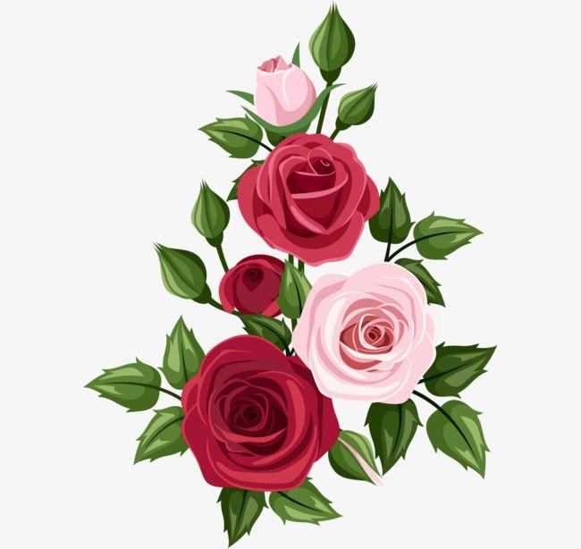 Ramos De Rosas Vector De Material Arte Png Y Vector Arte Rosa Clipart De Flor Flores Pintadas