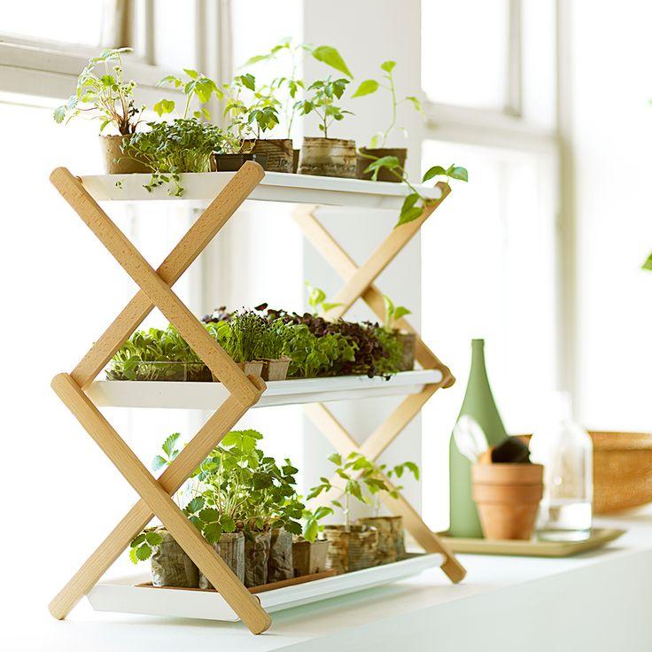 Käytännöllinen ja tyylikäs Taimihylly pitää taimet ja ruukut järjestyksessä ja helpottaa sekä taimien esikasvatusta että versotusta.