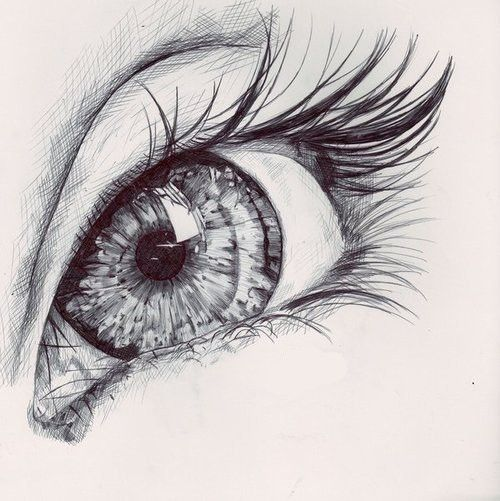 Pencil drawing. I love the detail of the iris.