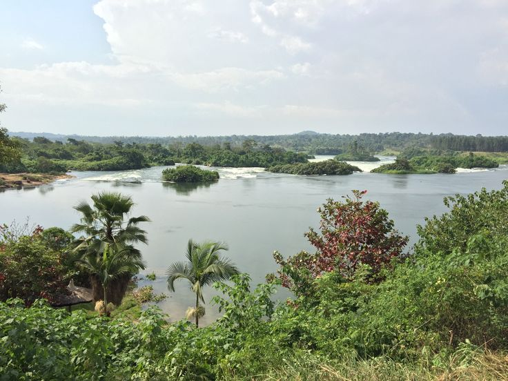 Beautiful view of The Nile River
