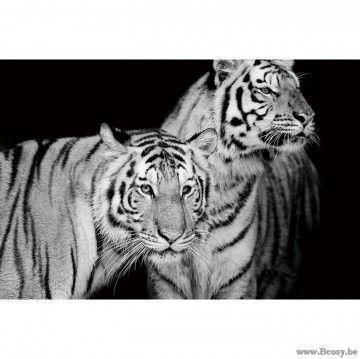 XX-PR Interiors Glass Art Glazen Kader glaspaneel 2 tijgers-tijger VI 80x120 in zwart wit