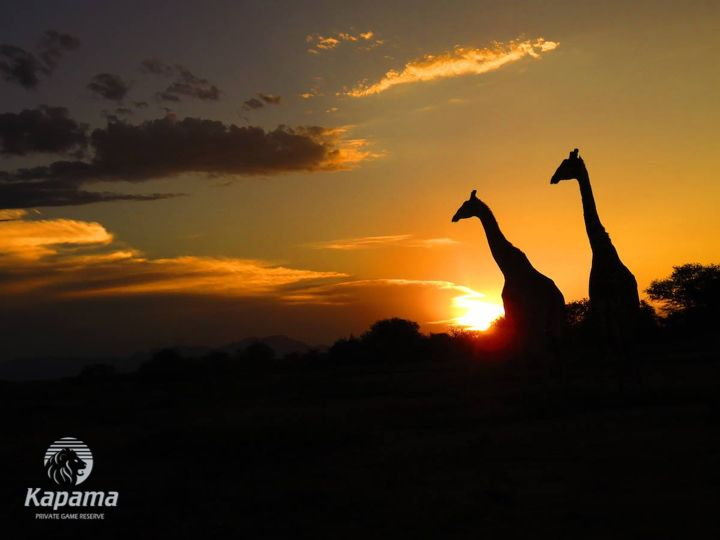 Kapama Private Game Reserve - Spectacular African sunsets