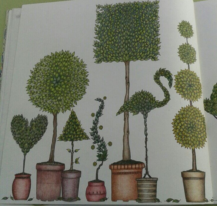 Johanna Basford- Secret Garden- picture by Gyöngyi Varga.