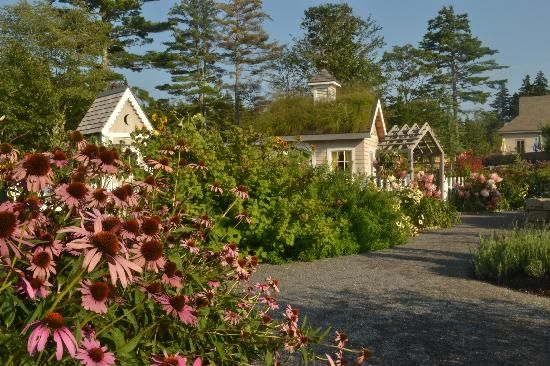 772 best images about boothbay boothbay harbor maine life - Botanical gardens boothbay harbor maine ...