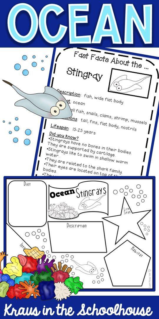 Ocean Habitat Activities Ocean habitat, Habitats, Animal
