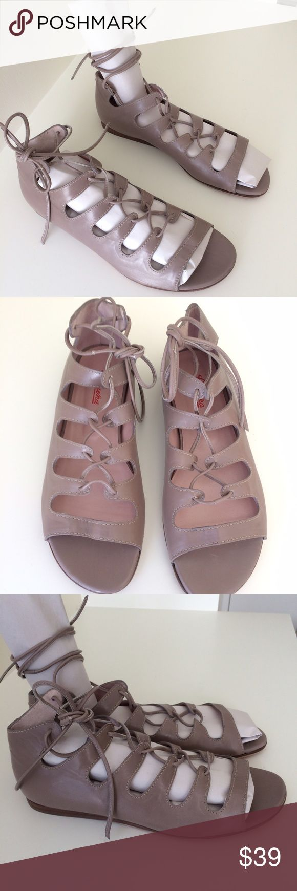 Gladiator flats, made in Spain, NWOT Gladiator flats, made in Spain, NWOT, never worn. Taupe color. Luruena Shoes Sandals