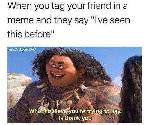 Umm You Re Welcome Disney Memes Memes Moana Memes