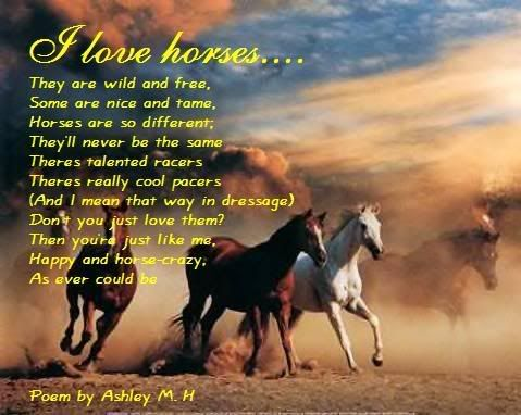 Funny Horse Poems | My First Horse Poem Graphics Code | My First Horse Poem Comments ...