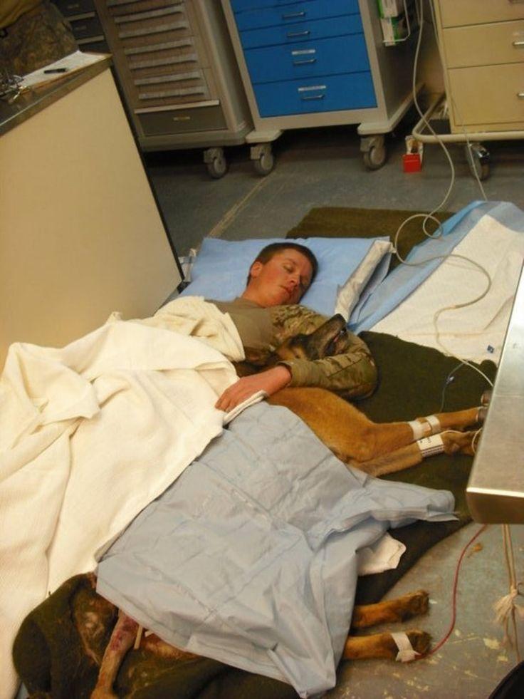 Suboficial Ryan Lee y el perro Valdo se acurrucan en el suelo de un hospital después de un rescate afortunado. [Guerra de Afganistán, 2011