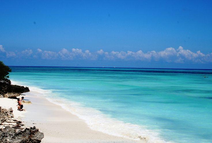 Beautiful Indian ocean, beachfront at Mnarani Beach Cottages