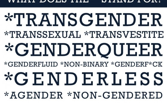What does the * mean in trans*?    Sam Killerman, It's Pronounced Metrosexual