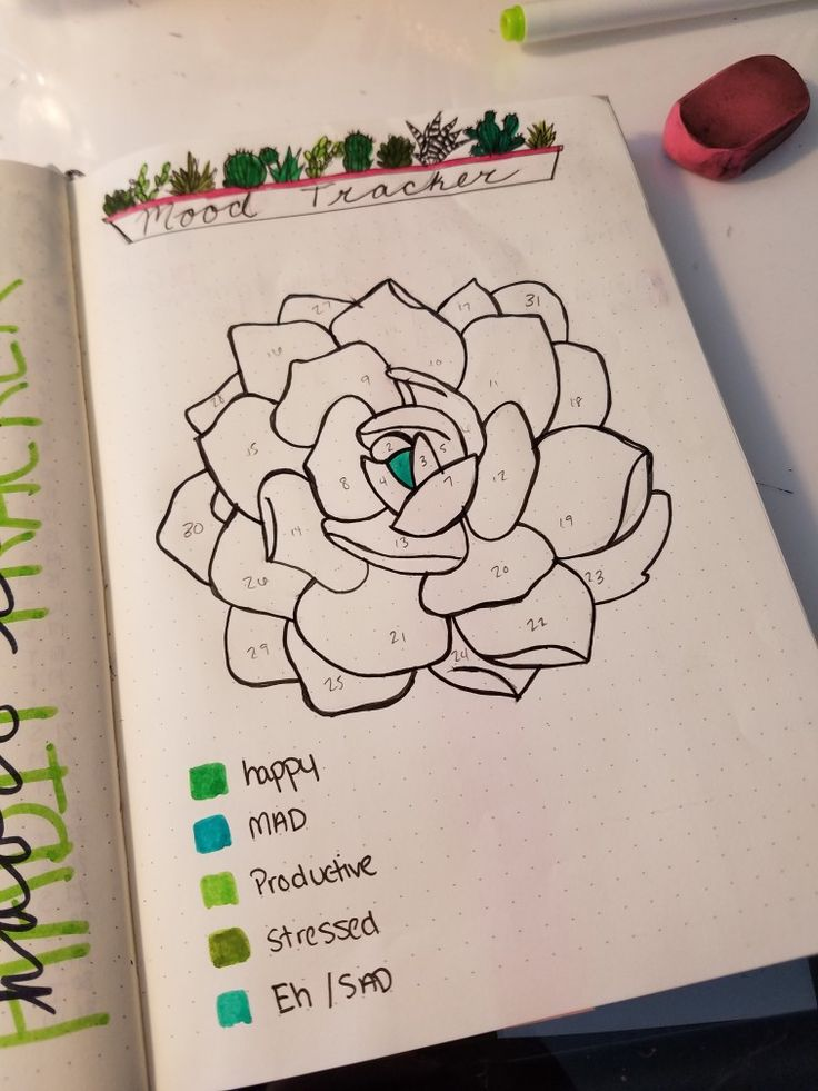 Succulent themed mood tracker for the month of may in my bullet journal