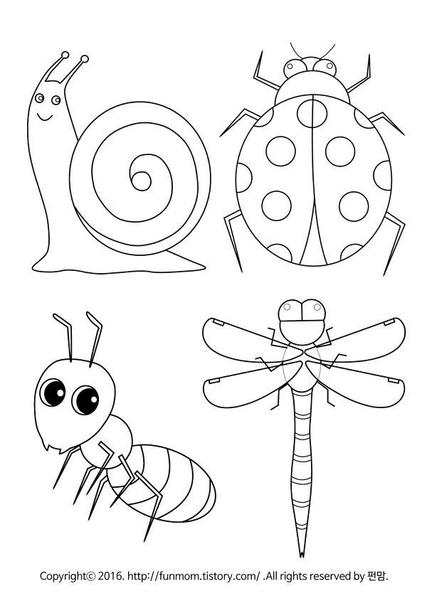 달팽이 무당벌레 개미 잠자리 곤충색칠공부 달팽이 무당벌레 동물