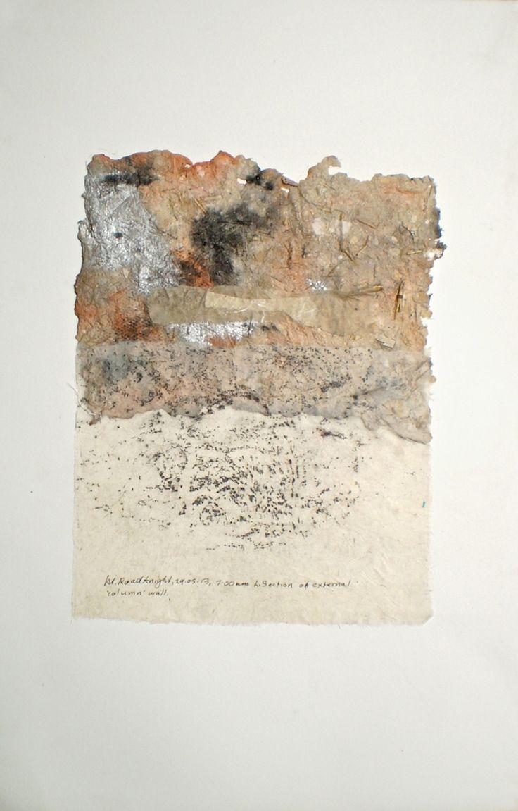 ELAINE d'ESTERRE - 'Petrified Forest 1', 2014, frottage on handmade paper on BFK Rives 60x40 cm by Elaine d'Esterre at www.elainedesterreart.com and www.facebook.com/elainedesterreart/ and http://instagram.com/desterreart/