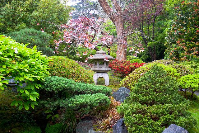 Japanese Gardens in San Francisco Botanical Garden, California, USA (by hghuman).