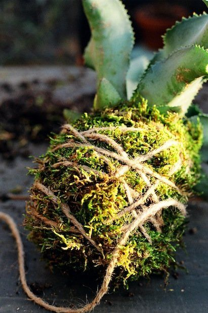 Build Your Own String Garden in 7 Steps | Living on GOOD http://www.good.is/posts/build-your-own-string-garden-in-7-steps