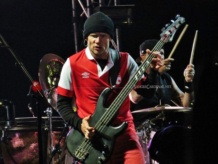 FLEA de Red Hot Chilli Pepers en el concierto de Estereopicnic 2014 (Bogotá, Colombia) foto gracias a SANGRE CARDENAL !!!