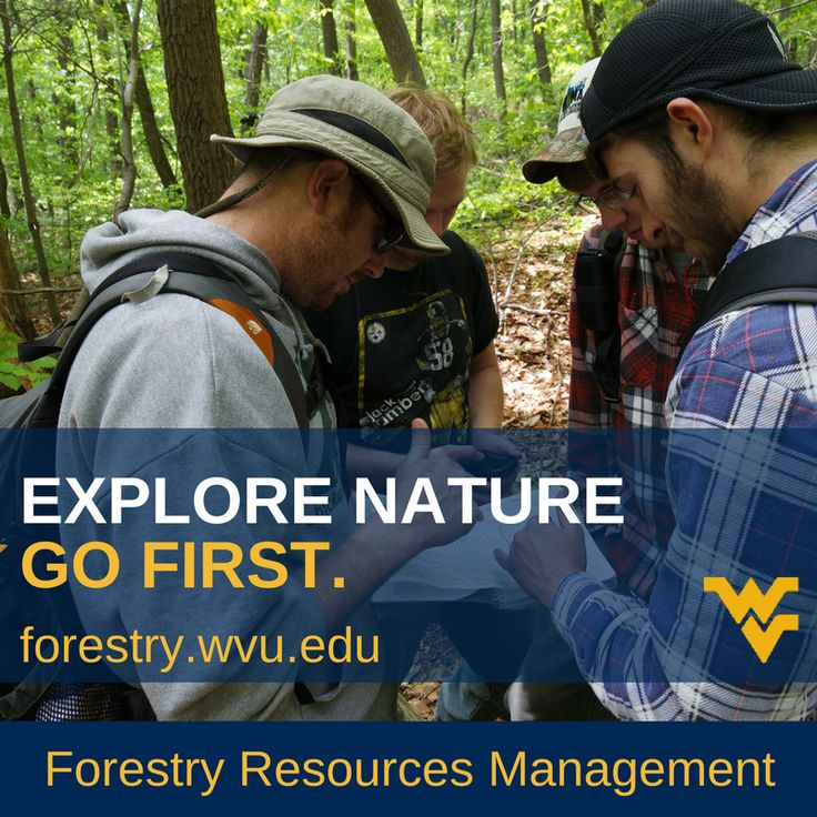"12/26/2017	2:45 PM	Twitter	WVUforestry				1				""Interested in sustainable forestry?  Check out #WVU Forest Resources Management  http://forestry.wvu.edu/  Students from Ohio, Maryland, Delaware, and Virginia can qualify for in-state tuition.    #forest #forestry #sustainable #science #STEM #forester #tree"""