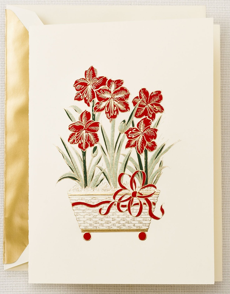 214 best crane stationery images on pinterest writing fountain poinsettia christmas card from crane m4hsunfo