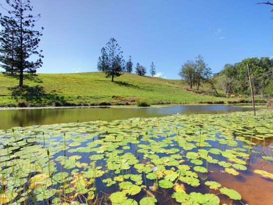 Wolvi 207 acres, warm soft country, 3 bed 2 bath home, sheds, 7 dams & creek.
