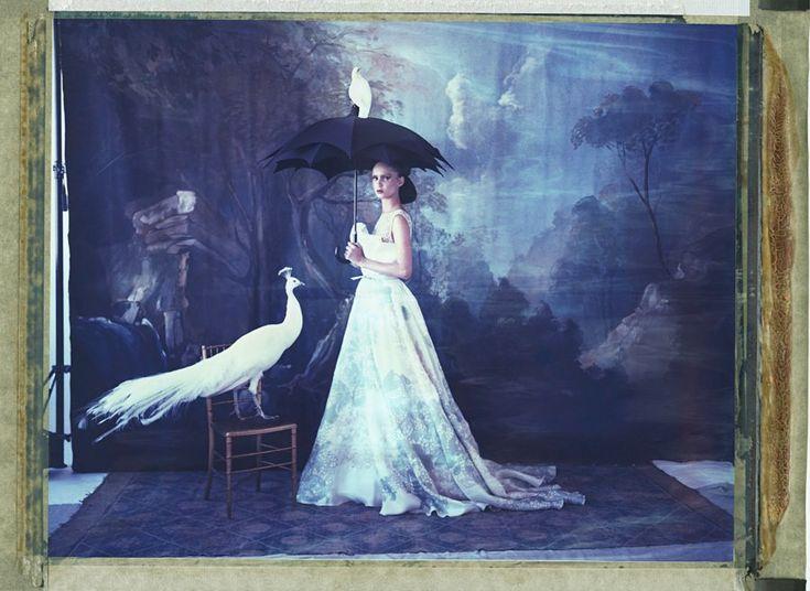 Fine Art Photography – Cathleen Naundorf – Photograph