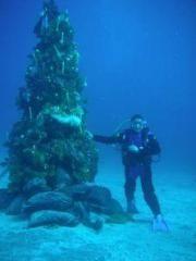 Izu Peninsula Scuba Diving Areas - PADI, NAUI Certified Diving Shops, Resorts & Courses | Shizuoka Prefecture
