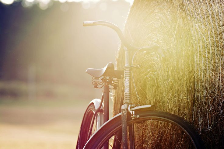 Vintage bicycle by David Charouz